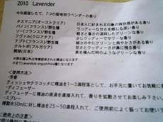20100918_p1060594